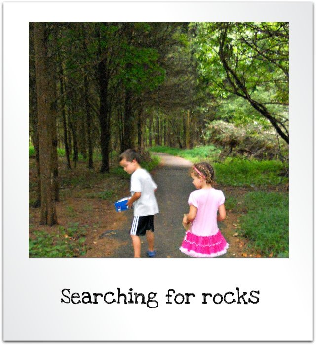 rock collecting