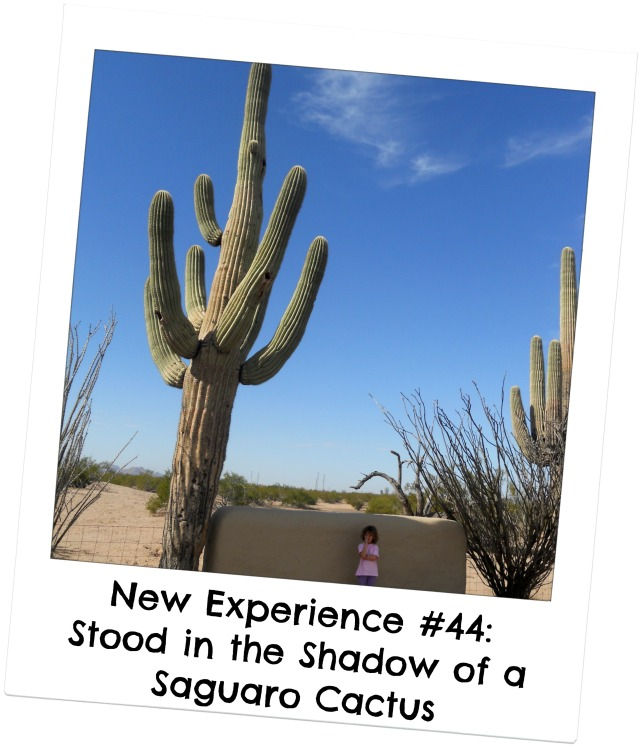 standing in shadow of cactus 1