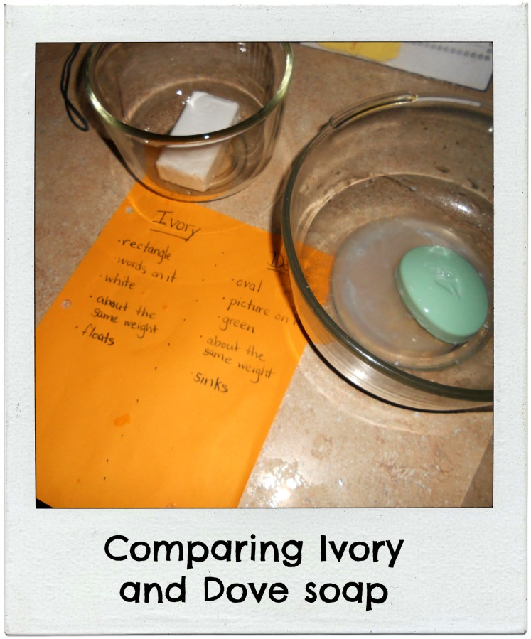 comparing ivory and dove soap