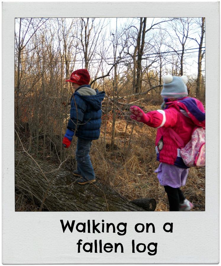 walking on fallen log